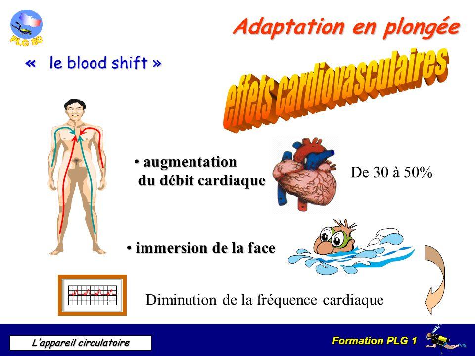 Formation PLG 1 Lappareil circulatoire Adaptation en plongée De 30 à 50% immersion de la face immersion de la face Diminution de la fréquence cardiaqu