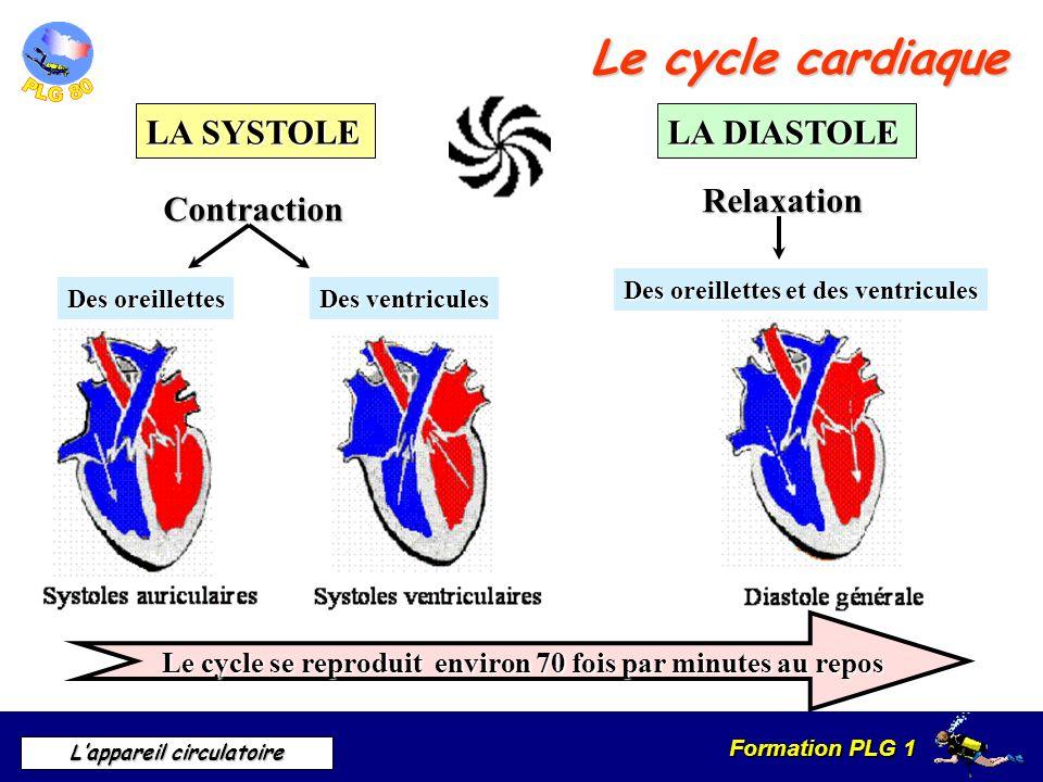 Formation PLG 1 Lappareil circulatoire Le cycle cardiaque LA SYSTOLE LA DIASTOLE Contraction Relaxation Le cycle se reproduit environ 70 fois par minu