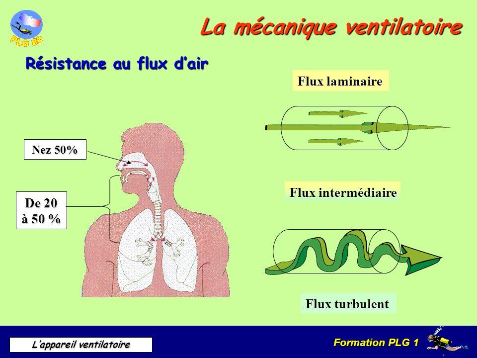 Formation PLG 1 Lappareil ventilatoire La mécanique ventilatoire Résistance au flux dair Flux intermédiaire Flux laminaire Flux turbulent Nez 50% Nez