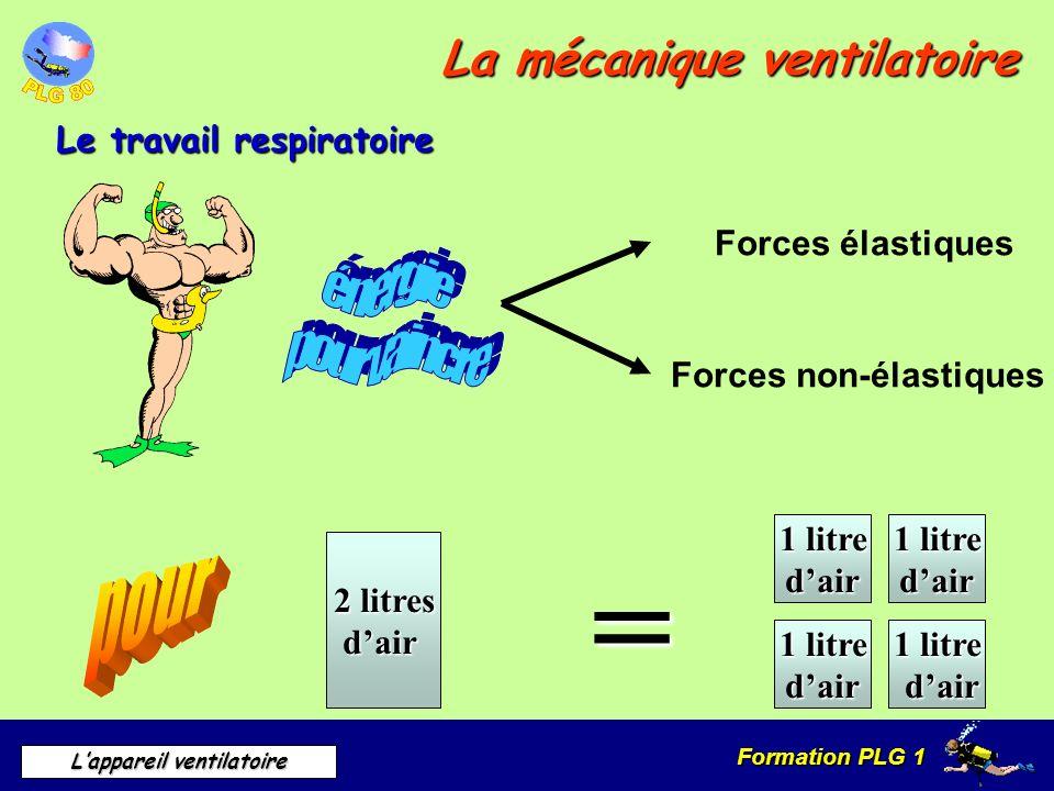 Formation PLG 1 Lappareil ventilatoire La mécanique ventilatoire Le travail respiratoire Forces élastiques Forces non-élastiques 2 litres dair = 1 lit