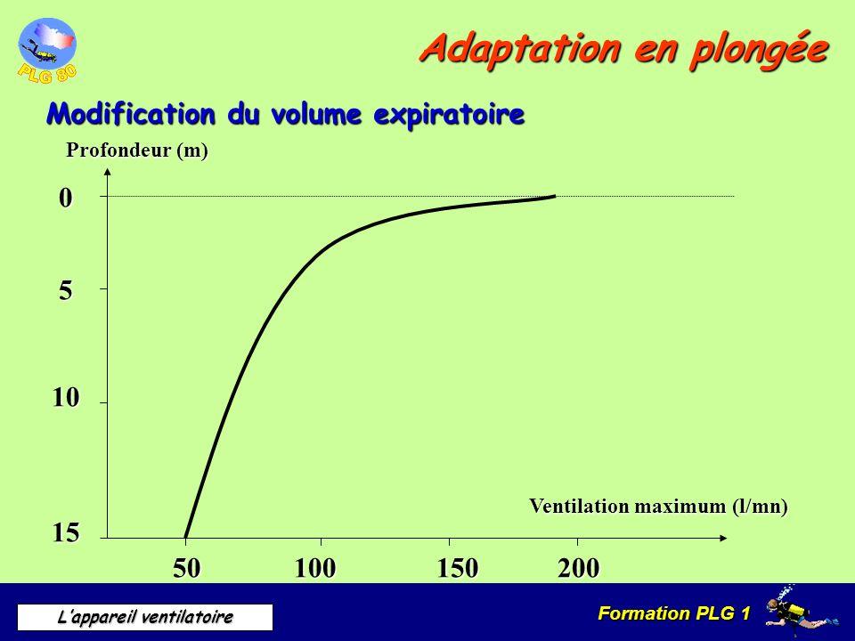 Formation PLG 1 Lappareil ventilatoire Adaptation en plongée Modification du volume expiratoire Profondeur (m) 0 5 10 15 50100150200 Ventilation maxim