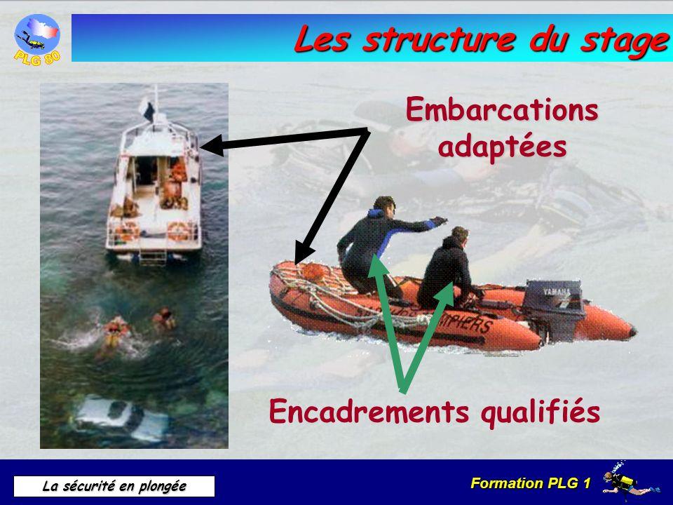 Formation PLG 1 La sécurité en plongée Les structure du stage Embarcations adaptées Encadrements qualifiés