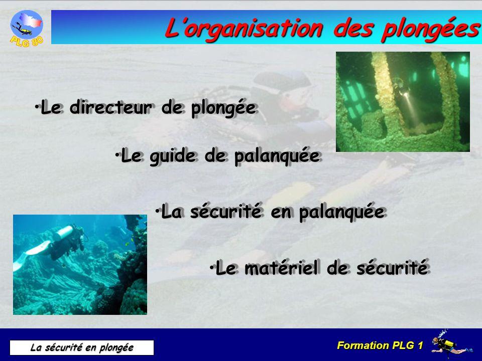 Formation PLG 1 La sécurité en plongée Lorganisation des plongées Le directeur de plongéeLe directeur de plongée Le guide de palanquéeLe guide de pala