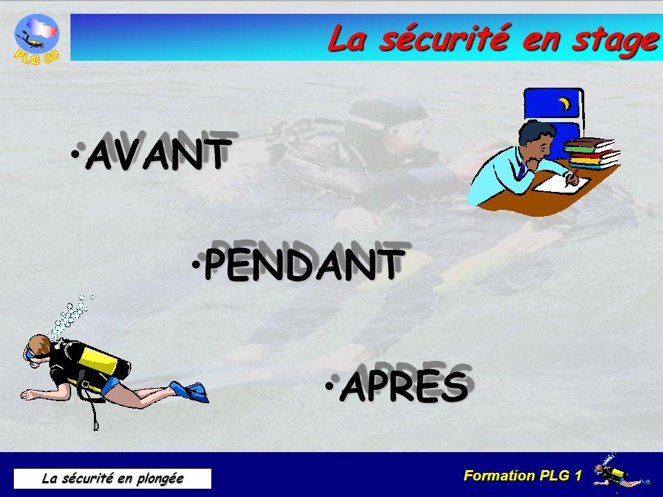 Formation PLG 1 La sécurité en plongée La sécurité en stage AVANTAVANT PENDANTPENDANT APRESAPRES
