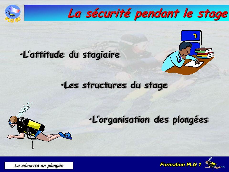 Formation PLG 1 La sécurité en plongée La sécurité pendant le stage Lattitude du stagiaireLattitude du stagiaire Les structures du stageLes structures