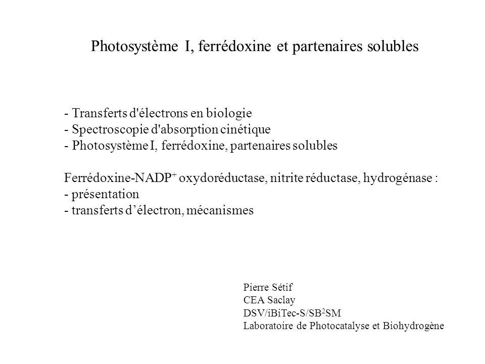 Photosystème I, ferrédoxine et partenaires solubles - Transferts d électrons en biologie - Spectroscopie d absorption cinétique - Photosystème I, ferrédoxine, partenaires solubles Ferrédoxine-NADP + oxydoréductase, nitrite réductase, hydrogénase : - présentation - transferts délectron, mécanismes Pierre Sétif CEA Saclay DSV/iBiTec-S/SB 2 SM Laboratoire de Photocatalyse et Biohydrogène
