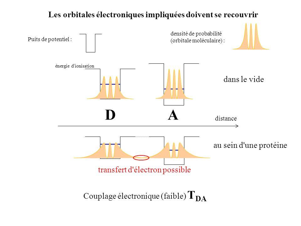 énergie potentielle x noyaux (d, ) (D + A) (D + + A - ) Lorsque l électron passe du donneur à l accepteur, les noyaux ne changent pas de position Approximation de Born-Oppenheimer, principe de Frank-Condon (transitions électroniques) : la transition est verticale Conservation de l énergie : la transition est horizontale x 0 (D, A) x 0 (D+, A-) (D + A) (D + + A - ) Tunneling de lélectron