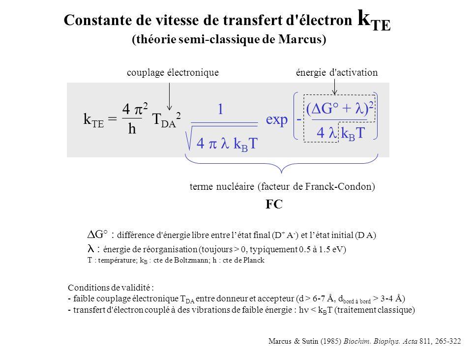( G° + ) 2 4 k B T - 1 k TE = T DA 2 exp 4 2 h Constante de vitesse de transfert d électron k TE (théorie semi-classique de Marcus) couplage électroniqueénergie d activation terme nucléaire (facteur de Franck-Condon) FC Conditions de validité : - faible couplage électronique T DA entre donneur et accepteur (d > 6-7 Å, d bord à bord > 3-4 Å) - transfert d électron couplé à des vibrations de faible énergie : h < k B T (traitement classique) G° : différence d énergie libre entre létat final (D + A - ) et létat initial (D A) : énergie de réorganisation (toujours > 0, typiquement 0.5 à 1.5 eV) T : température; k B : cte de Boltzmann; h : cte de Planck Marcus & Sutin (1985) Biochim.