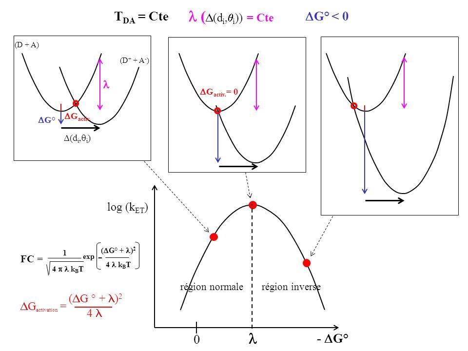 PSI = photosystème I Fd = ferrédoxine PSI - = (F A,F B ) - FBFB FAFA k on = 3.5 10 8 M -1 s -1 K d = 0.45 µM = k off /k on k on k off k off = 800 s -1 K d k on = 160 s -1