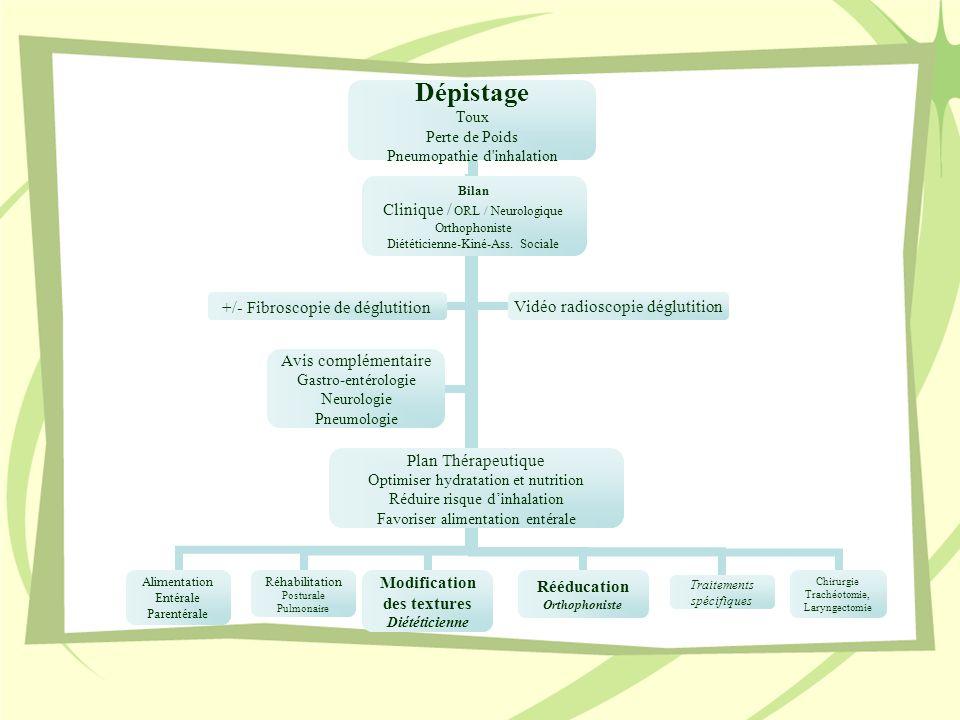 Dépistage Toux Perte de Poids Pneumopathie d'inhalation Alimentation Entérale Parentérale Réhabilitation Posturale Pulmonaire Modification des texture