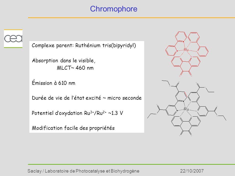 Saclay / Laboratoire de Photocatalyse et Biohydrogène22/10/2007 Chromophore Complexe parent: Ruthénium tris(bipyridyl) Absorption dans le visible, MLC