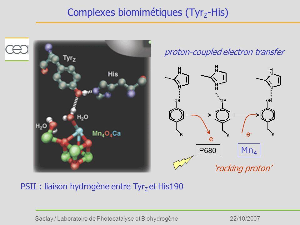 Saclay / Laboratoire de Photocatalyse et Biohydrogène22/10/2007 Complexes biomimétiques (Tyr Z -His) proton-coupled electron transfer rocking proton e