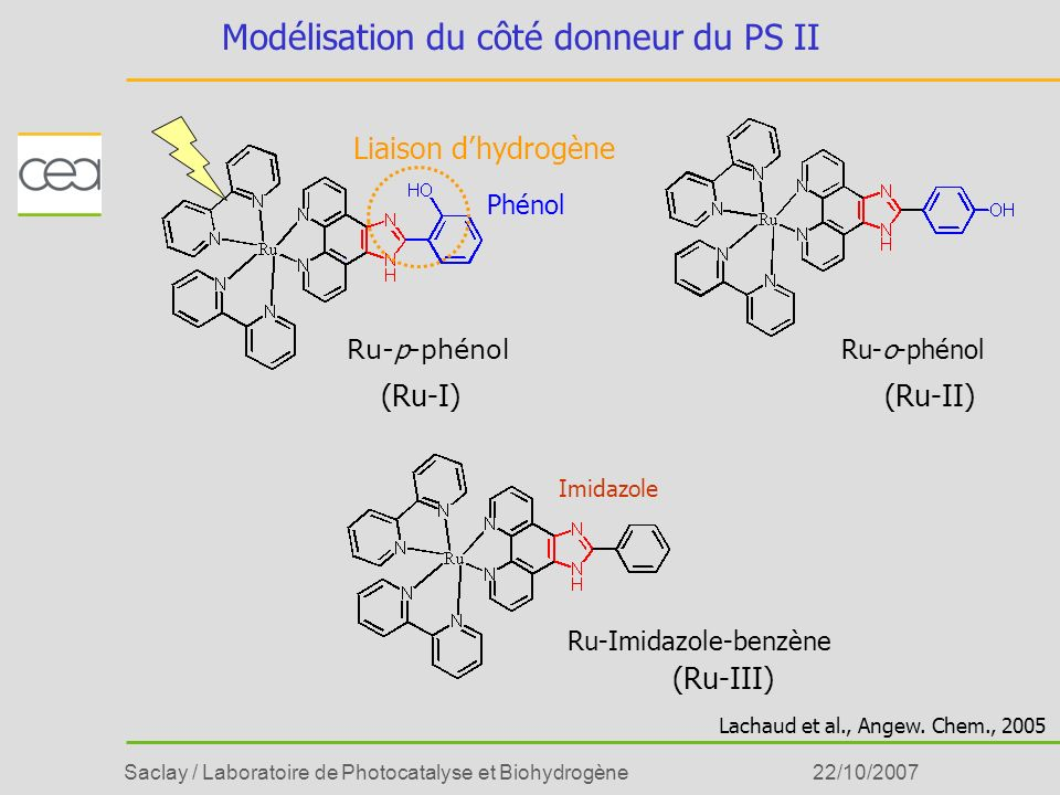 Saclay / Laboratoire de Photocatalyse et Biohydrogène22/10/2007 Modélisation du côté donneur du PS II Ru- p -phénol Ru-o-phénol Ru-Imidazole-benzène I
