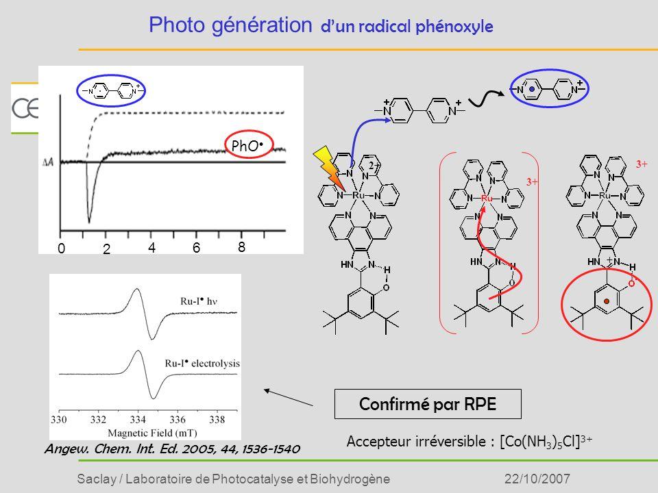 Saclay / Laboratoire de Photocatalyse et Biohydrogène22/10/2007 Confirmé par RPE 2+ 3+ + Angew. Chem. Int. Ed. 2005, 44, 1536-1540 PhO 0 4 2 6 8 Photo