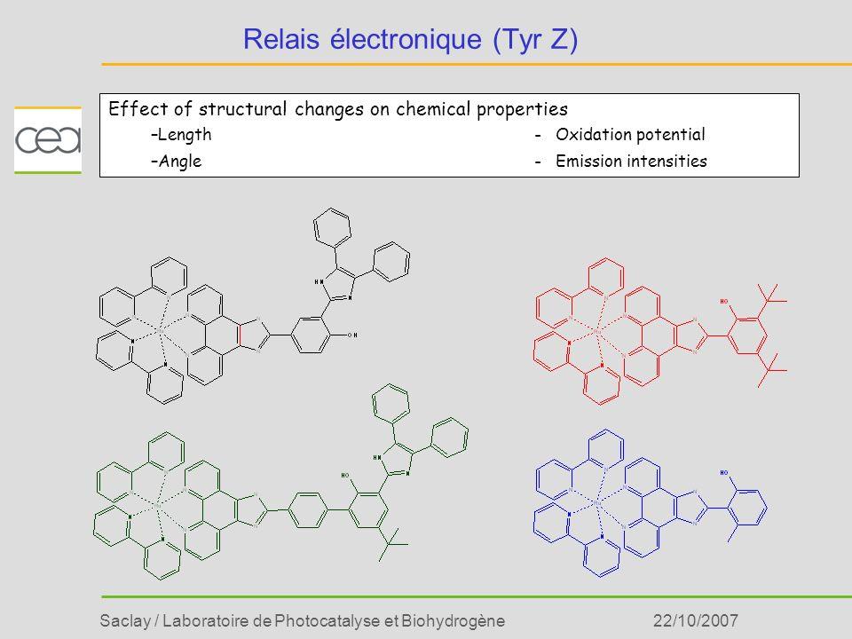Saclay / Laboratoire de Photocatalyse et Biohydrogène22/10/2007 Relais électronique (Tyr Z) Effect of structural changes on chemical properties –Lengt