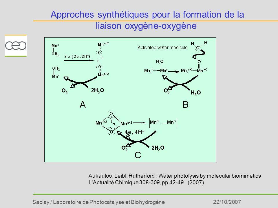 Saclay / Laboratoire de Photocatalyse et Biohydrogène22/10/2007 Approches synthétiques pour la formation de la liaison oxygène-oxygène Aukauloo, Leibl