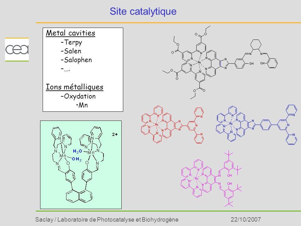 Saclay / Laboratoire de Photocatalyse et Biohydrogène22/10/2007 Site catalytique Metal cavities –Terpy –Salen –Salophen –…. Ions métalliques –Oxydatio