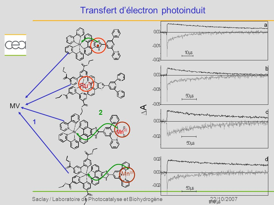 Saclay / Laboratoire de Photocatalyse et Biohydrogène22/10/2007 Transfert délectron photoinduit Mn II I 1 2 MV