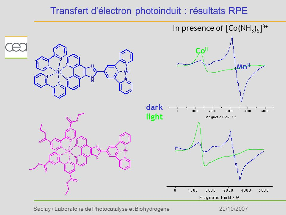 Saclay / Laboratoire de Photocatalyse et Biohydrogène22/10/2007 Transfert délectron photoinduit : résultats RPE In presence of [Co(NH 3 ) 5 ] 3+ dark