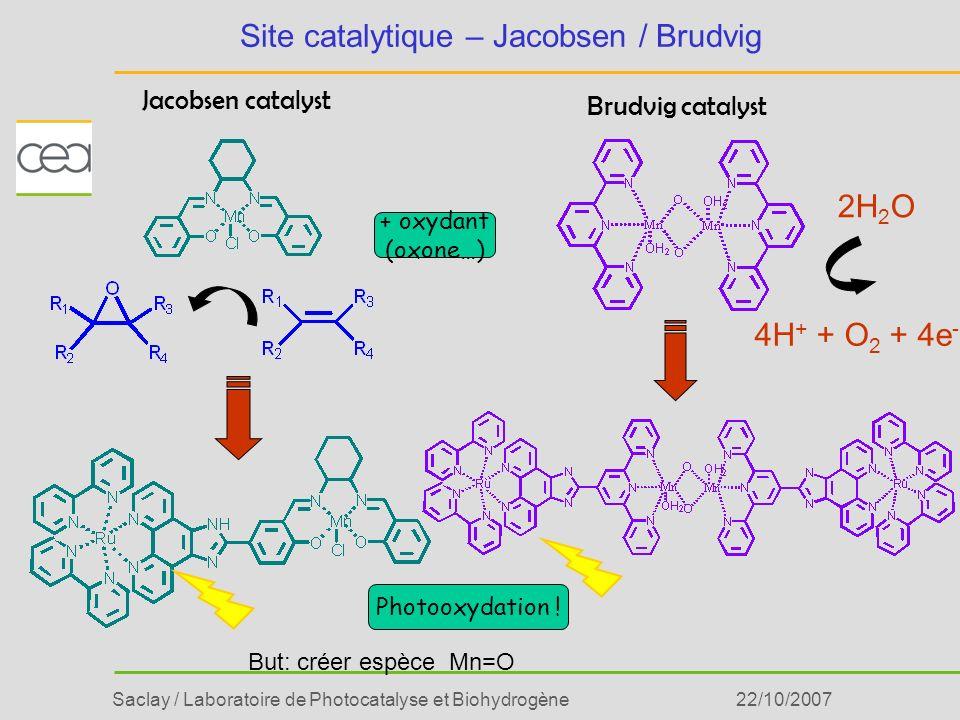Saclay / Laboratoire de Photocatalyse et Biohydrogène22/10/2007 Site catalytique – Jacobsen / Brudvig Brudvig catalyst Jacobsen catalyst 4H + + O 2 +