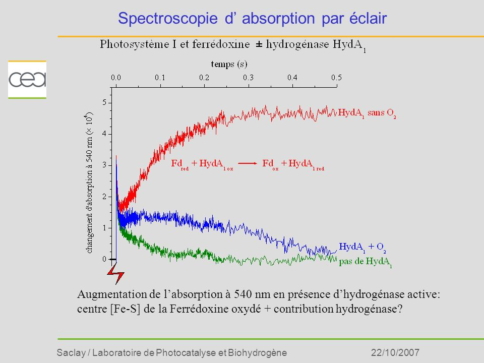 Saclay / Laboratoire de Photocatalyse et Biohydrogène22/10/2007 Spectroscopie d absorption par éclair Augmentation de labsorption à 540 nm en présence