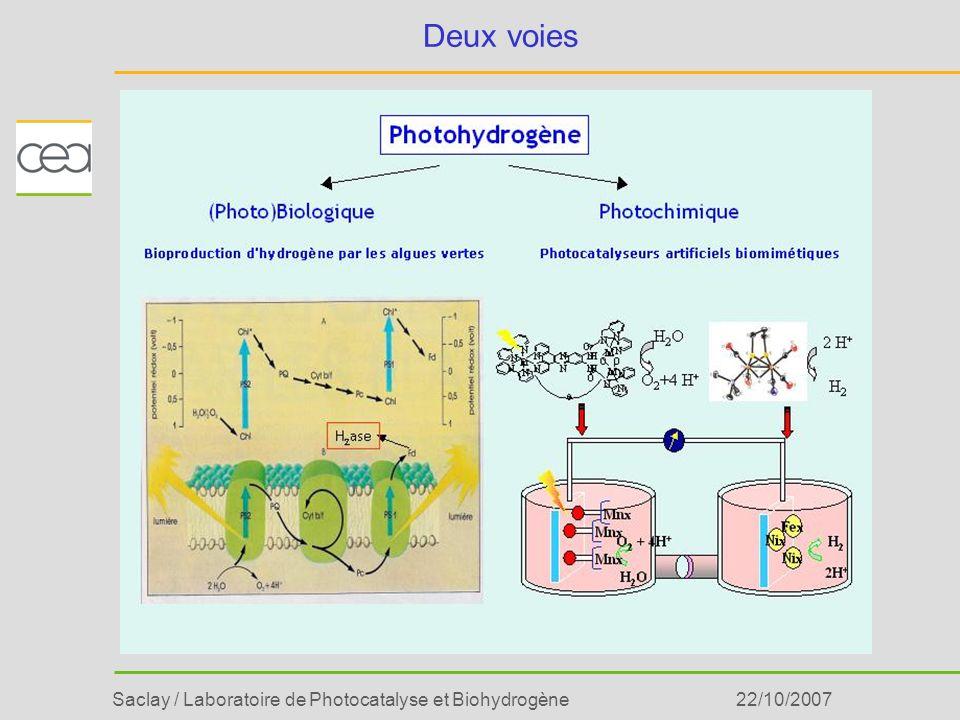 Saclay / Laboratoire de Photocatalyse et Biohydrogène22/10/2007 Hydrogénase 2 H + H2H2 Inspiration par des catalyseurs naturels Photosystème II Quel degré de biomimétisme ????