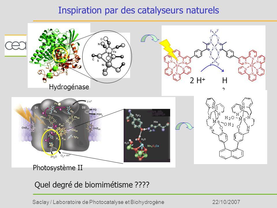 Saclay / Laboratoire de Photocatalyse et Biohydrogène22/10/2007 Approche interdisciplinaire bio-inspirée Idée Synthèse Caractérisation fonctionnelle Interprétation Compréhension des systèmes biologiques Chimie Spectroscopie, EC Biologie, Biophysique 2+ PhO LPB Mn O O Ru 4e - 2 H 2 O O 2 +4 H + Calculs DFT