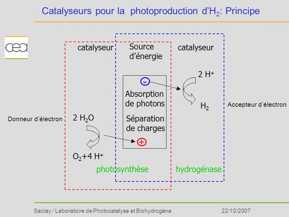 Saclay / Laboratoire de Photocatalyse et Biohydrogène22/10/2007 Catalyseurs pour la photoproduction dH 2 : Principe H2H2 O 2 +4 H + 2 H 2 O 2 H + cata