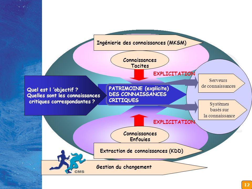 12 PATRIMOINE DES CONNAISSANCES KNOWLEDGE CAPITAL Réseau du savoir Connaissances Tacites Ingénierie des connaissances (MKSM) PROJET DE GESTION DES CON