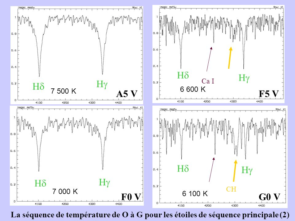 A5 V F0 V F5 V G0 V Ca I CH H H H H H H H H La séquence de température de O à G pour les étoiles de séquence principale (2) 7 500 K 6 100 K 7 000 K 6