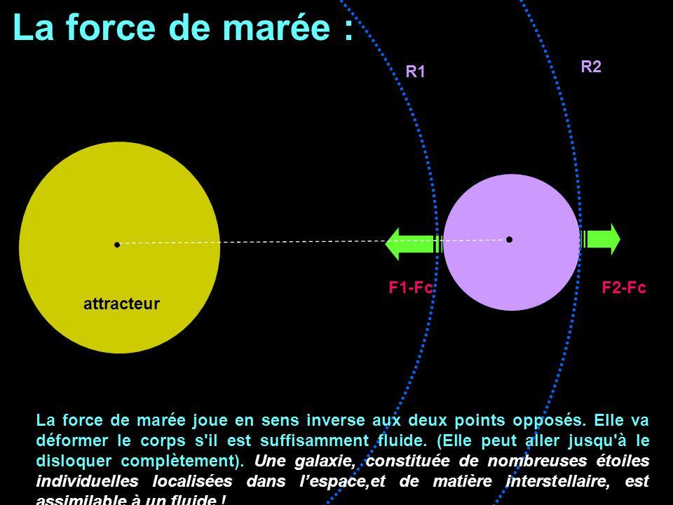 La force de marée : attracteur R1 R2 F1-Fc F2-Fc La force de marée joue en sens inverse aux deux points opposés. Elle va déformer le corps s'il est su