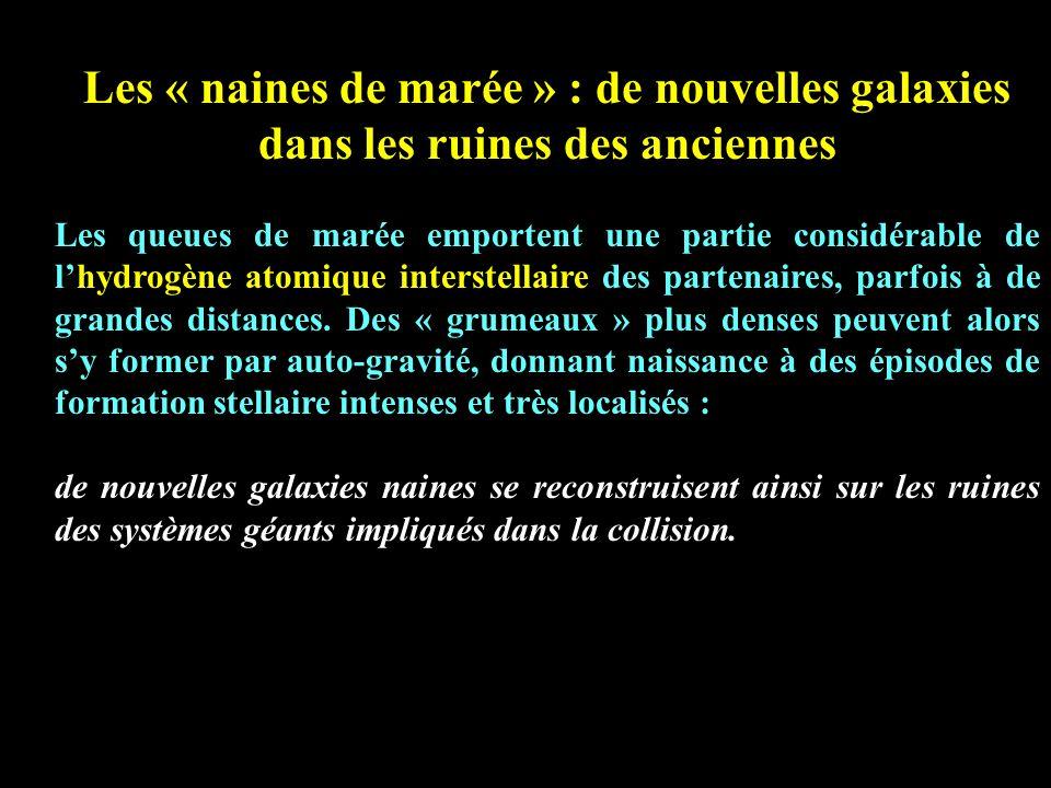 Les « naines de marée » : de nouvelles galaxies dans les ruines des anciennes Les queues de marée emportent une partie considérable de lhydrogène atom