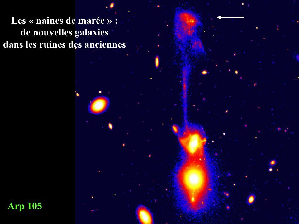 Les « naines de marée » : de nouvelles galaxies dans les ruines des anciennes Arp 105 cliché CFHT