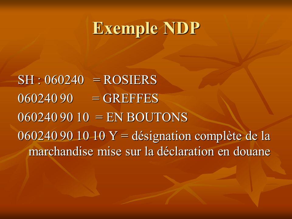 Exemple NDP SH : 060240 = ROSIERS 060240 90 = GREFFES 060240 90 10 = EN BOUTONS 060240 90 10 10 Y = désignation complète de la marchandise mise sur la