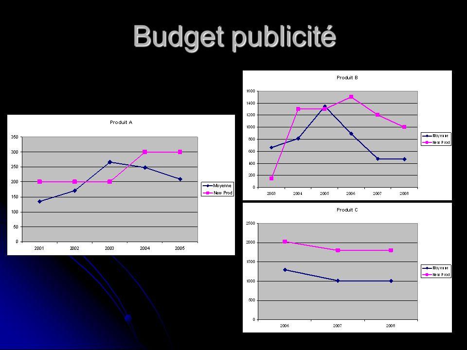 Budget publicité