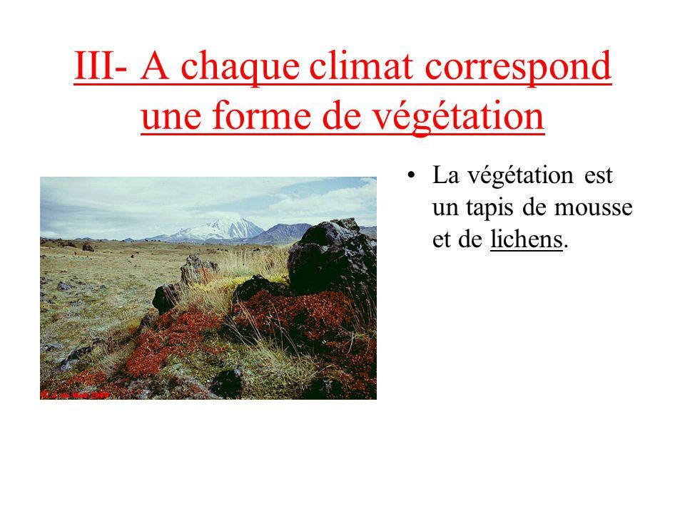 III- A chaque climat correspond une forme de végétation Décrivez la végétation