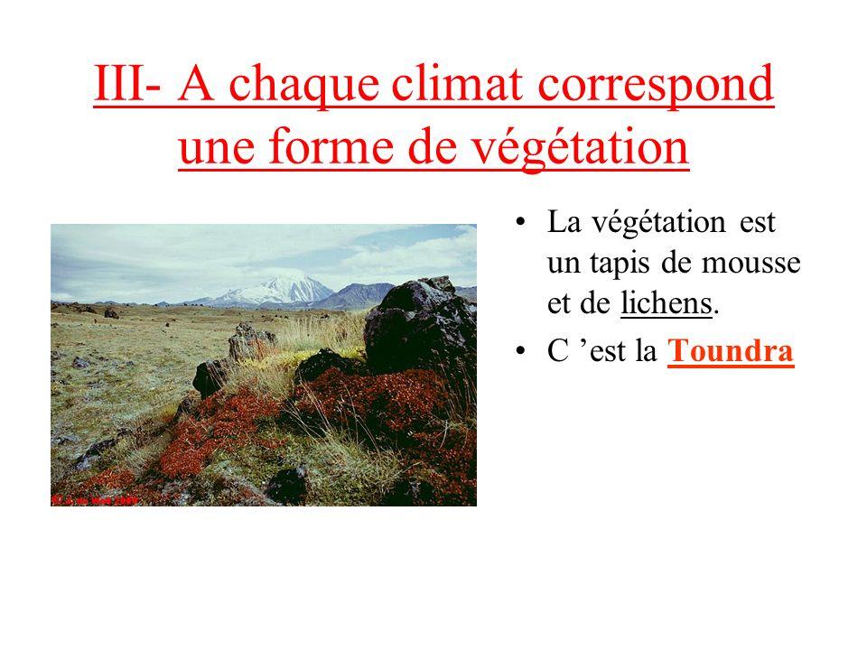 III- A chaque climat correspond une forme de végétation La végétation est un tapis de mousse et de lichens.