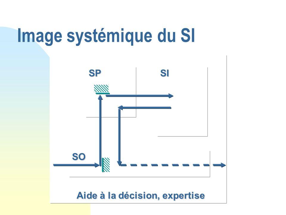 Image systémique du SI SPSI SO Aide à la décision, expertise