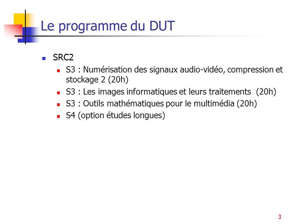 3 Le programme du DUT SRC2 S3 : Numérisation des signaux audio-vidéo, compression et stockage 2 (20h) S3 : Les images informatiques et leurs traitemen