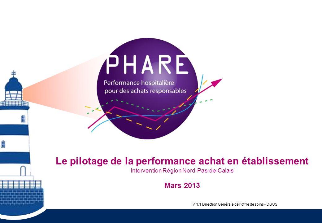 Le pilotage de la performance achat en établissement Intervention Région Nord-Pas-de-Calais Mars 2013 V 1.1 Direction Générale de loffre de soins - DG