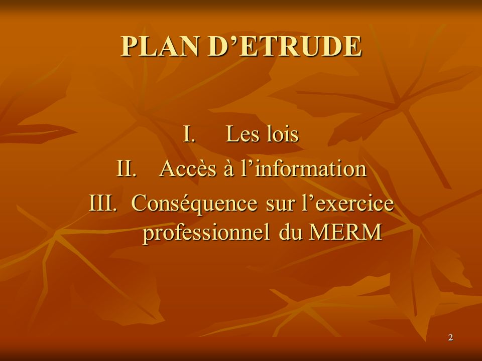 2 PLAN DETRUDE I.Les lois II.Accès à linformation III.Conséquence sur lexercice professionnel du MERM