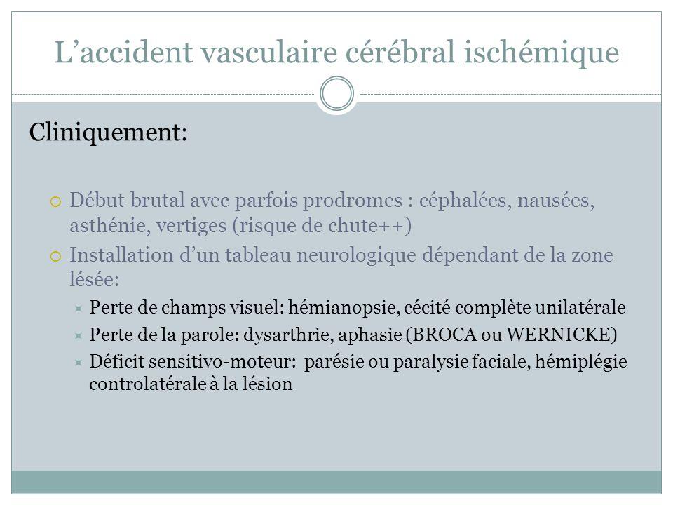 Laccident vasculaire cérébral ischémique Cliniquement: Début brutal avec parfois prodromes : céphalées, nausées, asthénie, vertiges (risque de chute++) Installation dun tableau neurologique dépendant de la zone lésée: Perte de champs visuel: hémianopsie, cécité complète unilatérale Perte de la parole: dysarthrie, aphasie (BROCA ou WERNICKE) Déficit sensitivo-moteur: parésie ou paralysie faciale, hémiplégie controlatérale à la lésion
