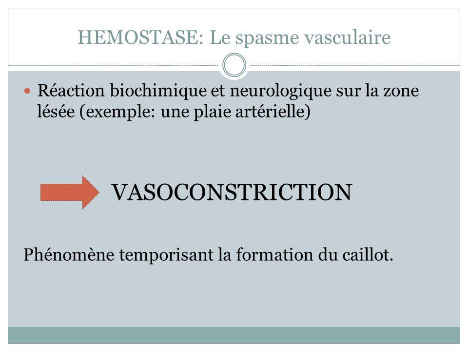 HEMOSTASE: Le spasme vasculaire Réaction biochimique et neurologique sur la zone lésée (exemple: une plaie artérielle) VASOCONSTRICTION Phénomène temporisant la formation du caillot.