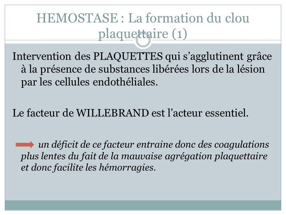 HEMOSTASE : La formation du clou plaquettaire (1) Intervention des PLAQUETTES qui sagglutinent grâce à la présence de substances libérées lors de la lésion par les cellules endothéliales.