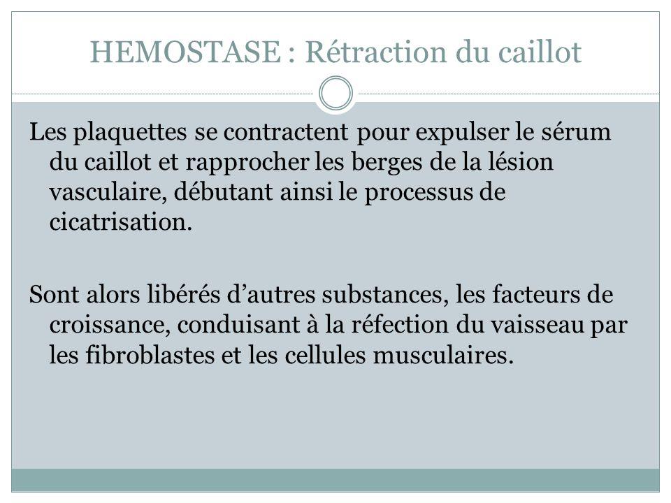 HEMOSTASE : Rétraction du caillot Les plaquettes se contractent pour expulser le sérum du caillot et rapprocher les berges de la lésion vasculaire, débutant ainsi le processus de cicatrisation.