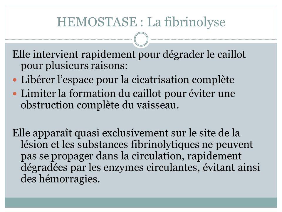 HEMOSTASE : La fibrinolyse Elle intervient rapidement pour dégrader le caillot pour plusieurs raisons: Libérer lespace pour la cicatrisation complète Limiter la formation du caillot pour éviter une obstruction complète du vaisseau.