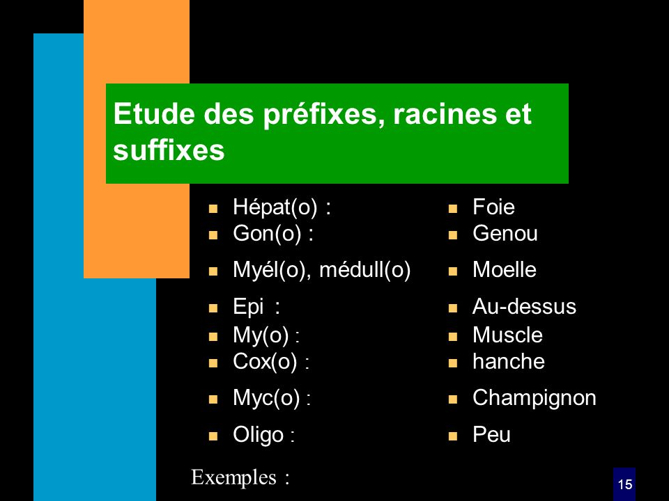 15 Etude des préfixes, racines et suffixes n Hépat(o) : n Foie n My(o) : n Muscle Exemples : n Gon(o) : n Genou n Cox(o) : n hanche n Myél(o), médull(o) n Moelle n Myc(o) : n Champignon n Epi: n Au-dessus n Oligo : n Peu