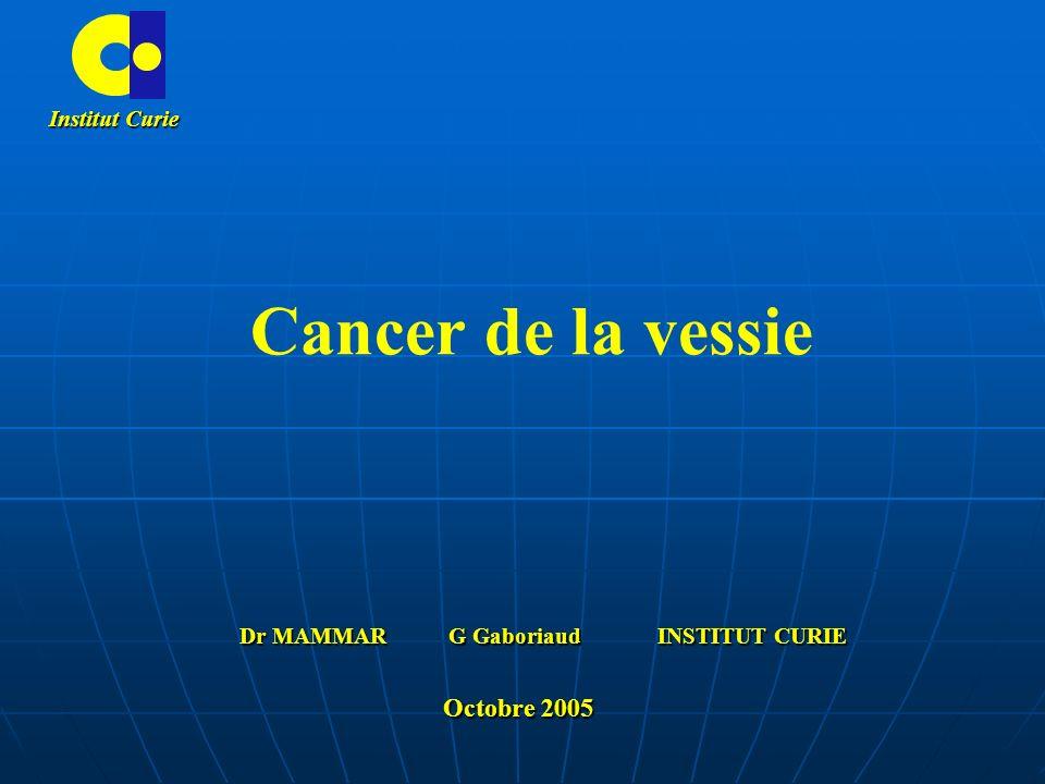 Cancer de la vessie Institut Curie Dr MAMMAR G Gaboriaud INSTITUT CURIE Octobre 2005