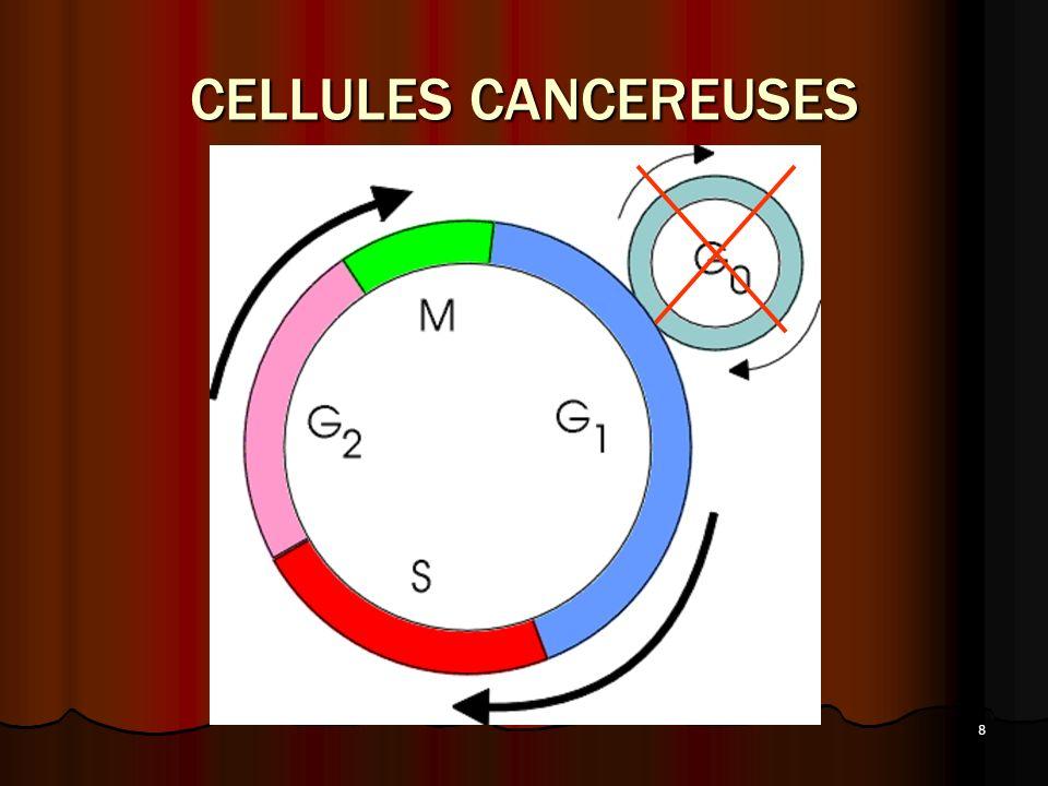 8 CELLULES CANCEREUSES