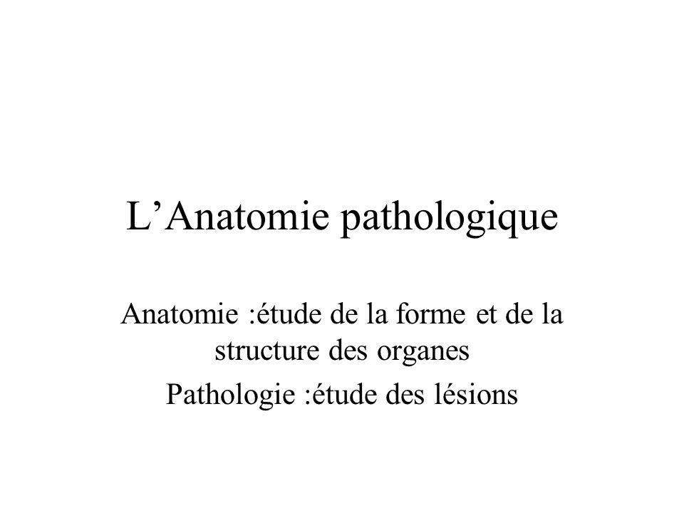 LAnatomie pathologique Anatomie :étude de la forme et de la structure des organes Pathologie :étude des lésions